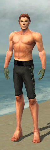 File:Mesmer Shing Jea Armor M gray arms legs front.jpg