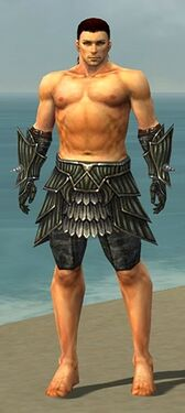 Warrior Wyvern Armor M gray arms legs front