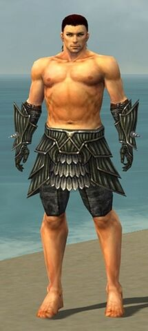 File:Warrior Wyvern Armor M gray arms legs front.jpg