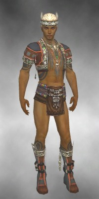 File:Ritualist Asuran Armor M gray chest feet front.jpg