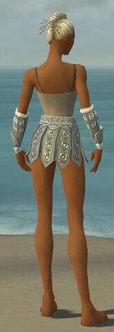 File:Warrior Ascalon Armor F gray arms legs back.jpg