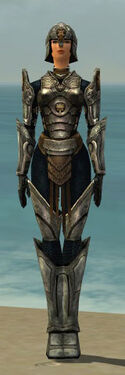Warrior Sunspear Armor F gray front