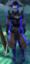 Kurzick Army Warrior