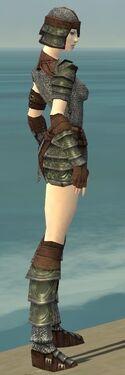Warrior Krytan Armor F gray side