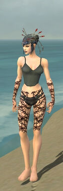 Necromancer Elite Scar Pattern Armor F gray arms legs front