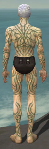 File:Necromancer Scar Pattern Armor M gray back.jpg