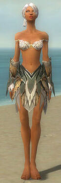 Paragon Norn Armor F gray arms legs front
