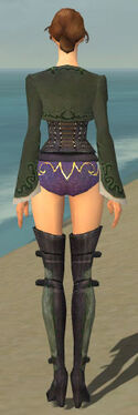 Mesmer Rogue Armor F gray chest feet back