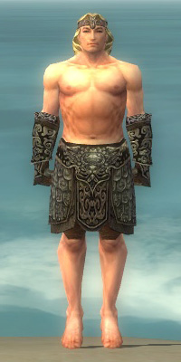 File:Warrior Canthan Armor M gray arms legs front.jpg