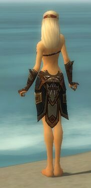 Ritualist Monument Armor F gray arms legs back
