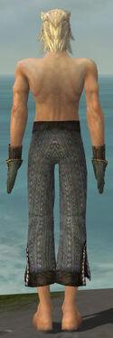 Elementalist Sunspear Armor M gray arms legs back