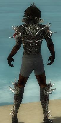 File:Necromancer Elite Canthan Armor M gray chest feet back.jpg