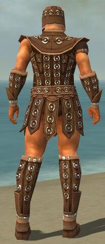 File:Warrior Ascalon Armor M dyed back.jpg