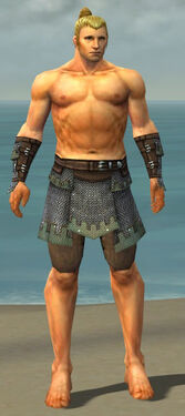 Warrior Tyrian Armor M gray arms legs front