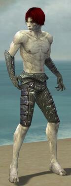 Necromancer Ascalon Armor M gray arms legs front
