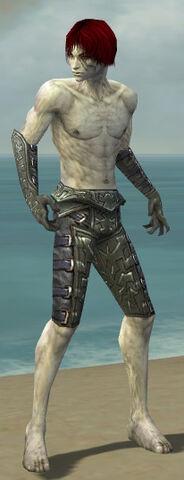 File:Necromancer Ascalon Armor M gray arms legs front.jpg