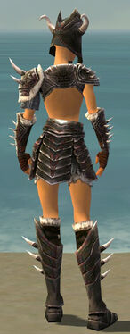 Warrior Norn Armor F gray back