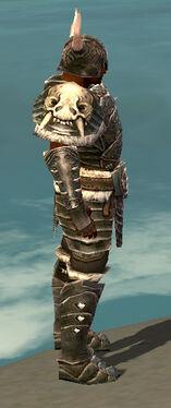 Warrior Norn Armor M gray side