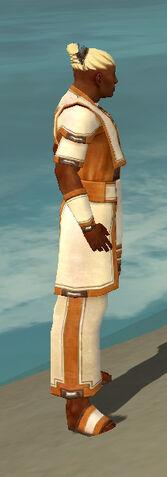 File:Monk Sacred Armor M dyed side.jpg