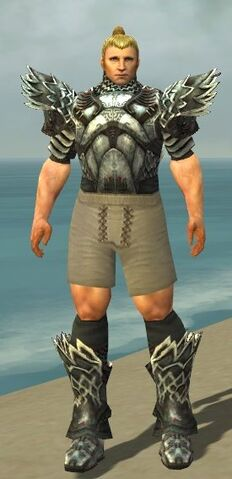 File:Warrior Silver Eagle Armor M gray chest feet front.jpg