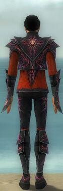 Elementalist Elite Stormforged Armor M dyed back