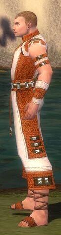File:Monk Elite Saintly Armor M dyed side.jpg