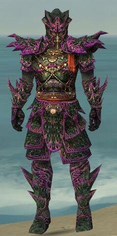 File:Warrior Elite Luxon Armor M dyed front.jpg