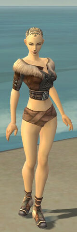 File:Monk Norn Armor F gray chest feet front.jpg