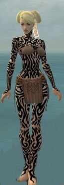 Monk Flowing Armor F dyed front