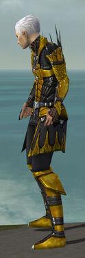 Necromancer Cabal Armor M dyed side