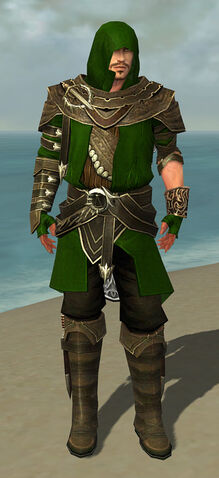 File:Shining Blade Uniform M default front.jpg
