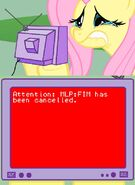 91141 - fluttercry Its the end of the world as we know it red screen of death rsod tagme tv meme