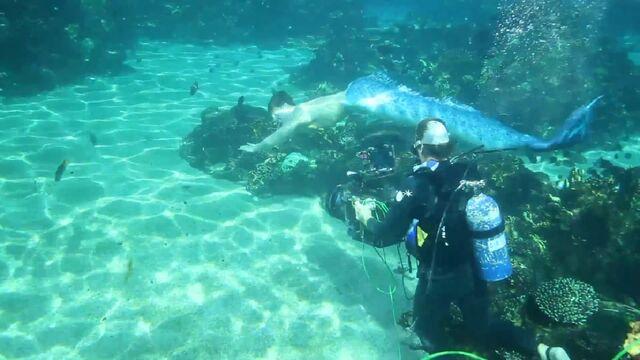 File:Alex Underwater Scene.jpg