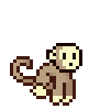 Pet-Monkey-Desert.png