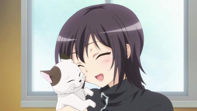 File:Yozoralovecats.jpg