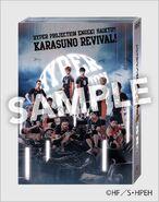 Revivial - DVD (front)