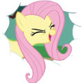 Fluttershy yay.png