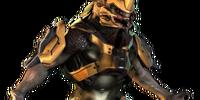 Sangheili Warrior