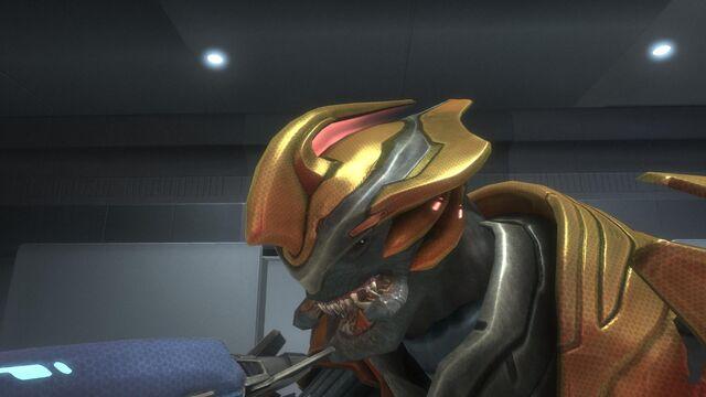 File:Elite Sangheili Major.jpg