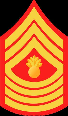 File:USMC-E9-MGyS.png
