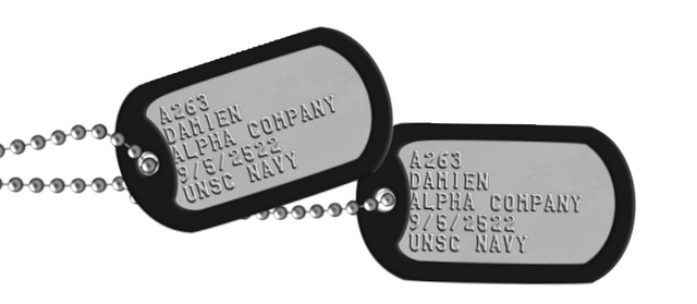 File:Damien's dogtags.png