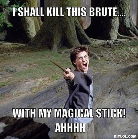 File:Piseed-off-harry-meme-generator-i-shall-kill-this-brute-with-my-magical-stick-ahhhh-3484b8.jpg