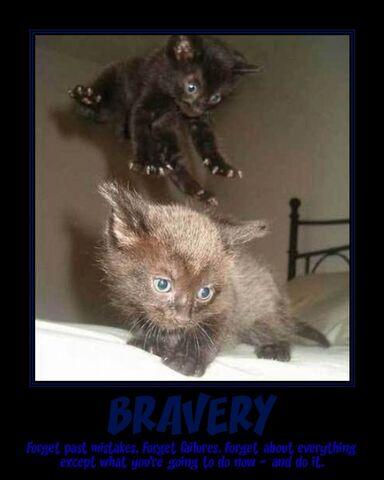 File:Bravery-1.jpg