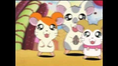 Tottoko Hamtaro S3 Episode 225 Troublesome Magical Seeds part 2