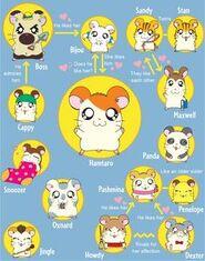 Hamster relationships