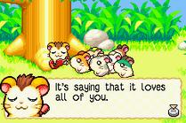 Hamtaro - Rainbow Rescue 02