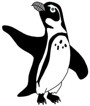 Manny the African Penguin