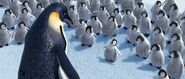 2006 happy feet 023