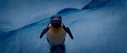 Gloria in Happy Feet 2