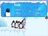 RaulNiftyMovesMamboJour